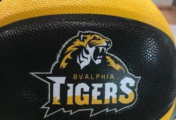 Nieuwe geel/zwarte custom BVALPHIA TIGERS basketbal bestellen?